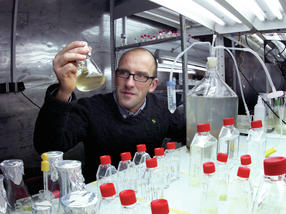 Prof. Dr. Georg Pohnert