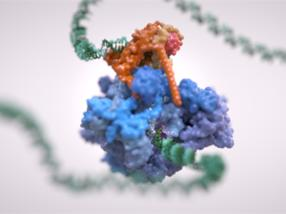 Zoom in to watch DNA code being read