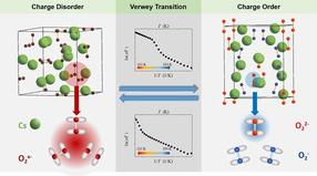 Charge order and electron localization in a molecule-based solid