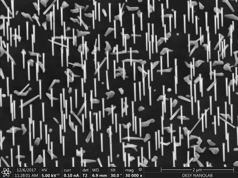 Forscher beobachten wachsende Nanodrähte live