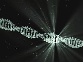 Neue Details über die Funktion eines rätselhaften Proteins