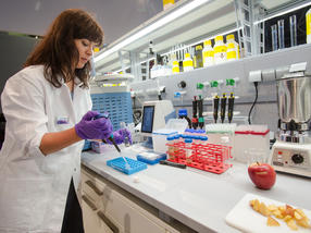 From exposomics to phytotoxins: Safe foodstuffs in the focus of analytica 2018