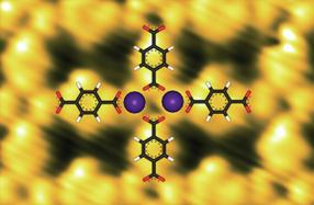 Ein flächendeckendes Modell-Enzym_1