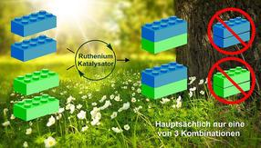 Wie aus dem Baukasten: Grüne Synthese wichtiger Moleküle entdeckt