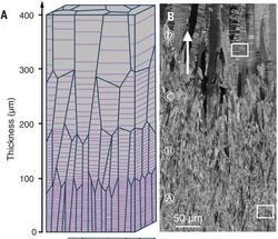Abstände zwischen den Nanotwins sorgen für stärkere Metalle