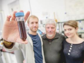 Metallische Nano-Katalysatoren ahmen die Struktur von Enzymen nach