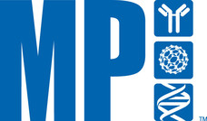 mp-logo_blue.jpg