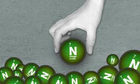nitrogenase to convert nitrogen