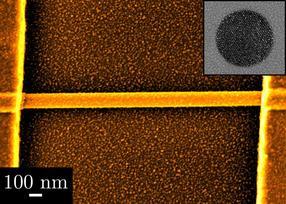 Palladium nanoparticles