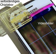 Handylabor: Chemische Sensorsysteme