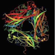 Blasenentzündung: Wenn Bakterien die Angel auswerfen