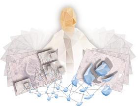 Selbstlernende Software für bessere medizinische Diagnosen