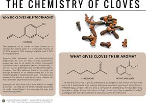 Guarding Against Toothache & Premature Ejaculation – The Chemistry of Cloves