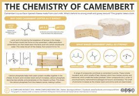 The Chemistry of Camembert