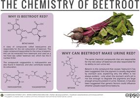Why Can Beetroot Turn Urine Red?