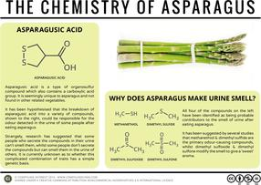 Why Does Asparagus Make Urine Smell? – The Chemistry of Asparagus