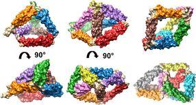 Un diminuto 'origami' de proteínas capaces de autoensamblarse