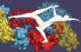 Akrobatik-Duo in der Zelle