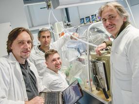 Wasserstoffproduktion: Proteinumfeld macht Katalysator effizient