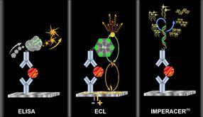 Chimera_Biotec-Cytokine_Quant_Comp_Final-2