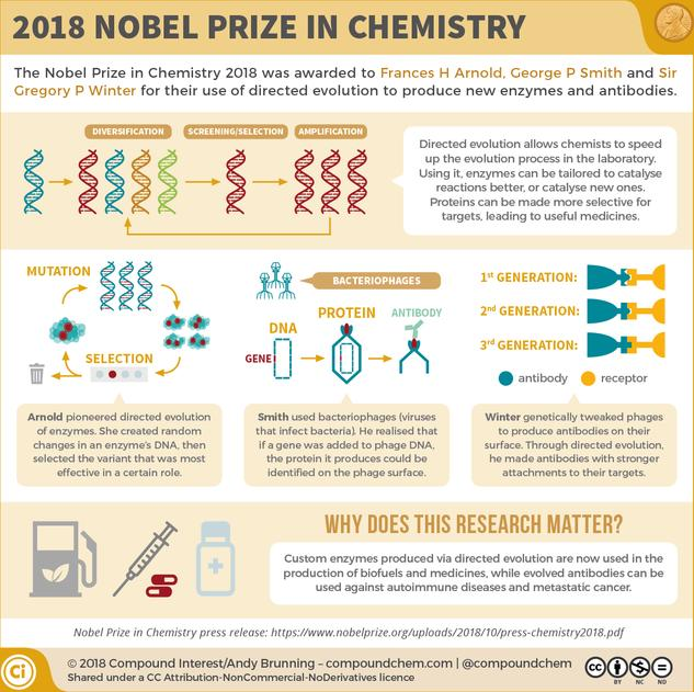 The 2018 Nobel Prize in Chemistry: Harnessing evolution to produce new enzymes and antibodies