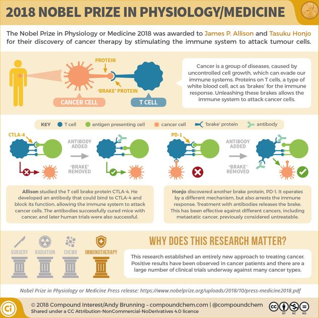 The 2018 Nobel Prize in Physiology/Medicine: Unleashing our immune systems against cancer
