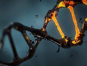 Utilizing CRISPR for better antibiotics