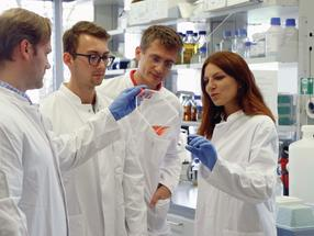 CRISPR/Cas-Bibliotheken eröffnen neue Chancen für die Krebsforschung