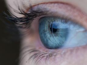 Malaria per Augendiagnostik früher erkennen