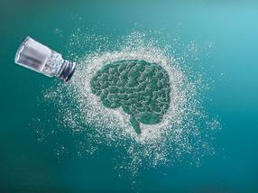 Gib mir bitte die Kartoffelchips! Neue Forschung entdeckt neuronale Schaltkreise, die das Verlangen und die Sättigung nach salzigem Geschmack regulieren.