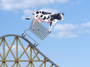 Die Preise für Milch fahren Achterbahn