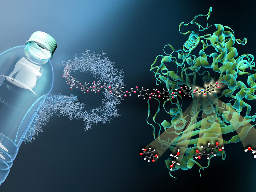 """""""Molekulare Schere"""" für den Plastikmüll"""