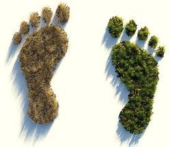 CO2-Fußabdruck