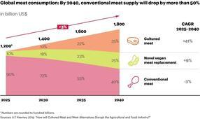 Entwicklung des Fleischkonsums bis 2040.