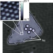 Sensing magnetism in atomic resolution with just a scanning tunneling microscope