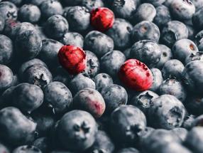 Food Fraud: Mehr als nur die Spitze des Eisbergs bekämpfen