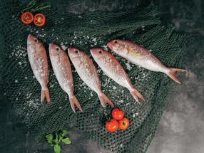 Fish increasingly popular in the EU
