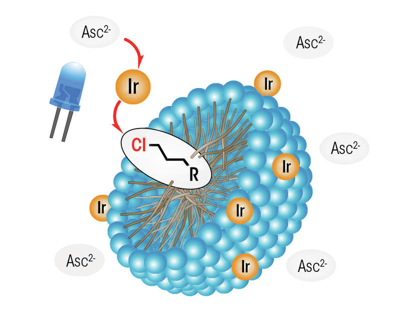 Micelles As A Reaction Environment Microstructured Aqueous Solutions Allow For A Photocatalytic Activation Of Alkyl Chlorides