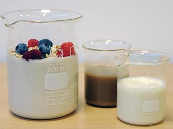 Veganer-'Joghurt' mit Milchsäurebakterien aus Pflanzen hergestellt