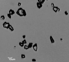 "Sample ""quartz powder 2"" under the microscope."