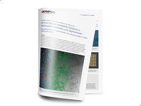 """Whitepaper """"Vorteile von Deep Learning-Ansätzen in der Mikroskopie"""""""