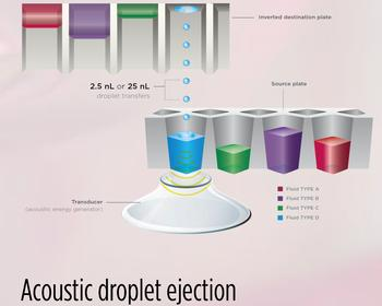 Echo Acoustic Droplet Ejection Technology