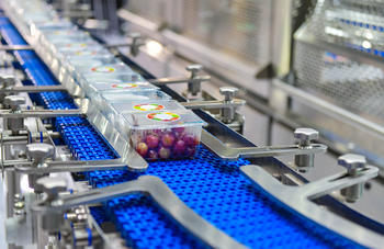 How population growth will shape the future of the food industry