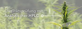 Qualitätsprüfung mit Analytischer HPLC