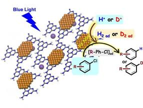 Visible light-photocatalytic water-splitting for hydrogenation of aryl chlorides