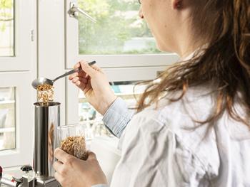 : Mit dem Extrusionsverfahren untersuchen Forschende des KIT die Backeigenschaften von Mehlen aus Insektenpulver.