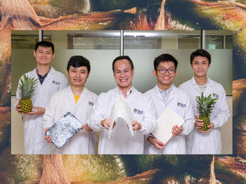 Assoc Prof Duong Hai-Minh (centre) and his team from NUS Mechanical Engineering developed a technique that converts pineapple leaf fibres into create ultra-light, biodegradable aerogels.
