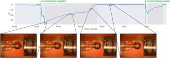 Anwendungsbeispiel sonicwipe mit pH Sonde aus der Lebensmittelindustrie