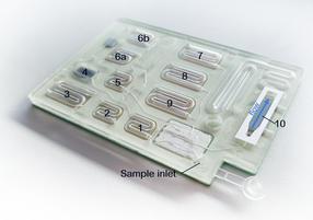 Prototyp einer Mikrofluidik-Kartusche für die Vor-Ort-Diagnostik