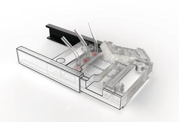 Prototyp eines Organ-on-a-Chip Systems zur Echtzeitmessung der Zellvitalität